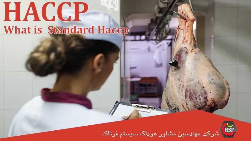گواهینامه haccp-چیست