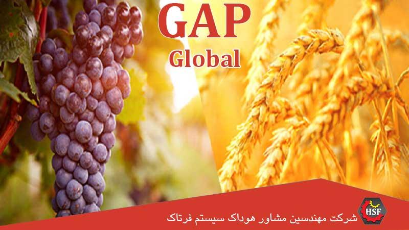 گواهینامه-گلوبال-گپ